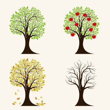 Illustration of 4 trees, each in a Spring / Summer / Fall / Winter phase