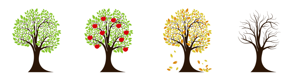 Four illustrations of the same tree, in Spring, Summer, Fall, Winter foliage